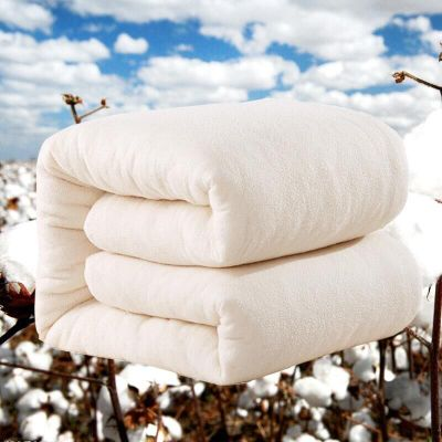 历史低价:手工全棉花被2斤装