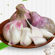 新鲜紫皮大蒜5斤