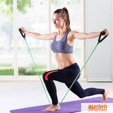 家庭健身拉力器(手臂塑形)