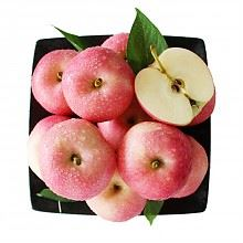 泉盛隆星云加力果苹果约2kg12个