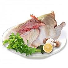 限地区:五合昆域 有机枸杞大公鸡 1.5kg*3只