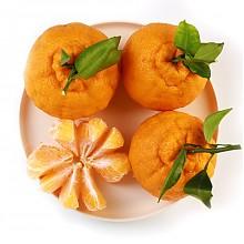 珍享丑橘1.5Kg(单果重180-250g)