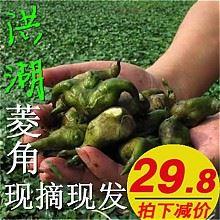 洪湖新鲜野生菱角5斤