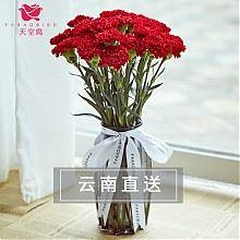 天堂鸟康乃馨鲜花束家用插花18支
